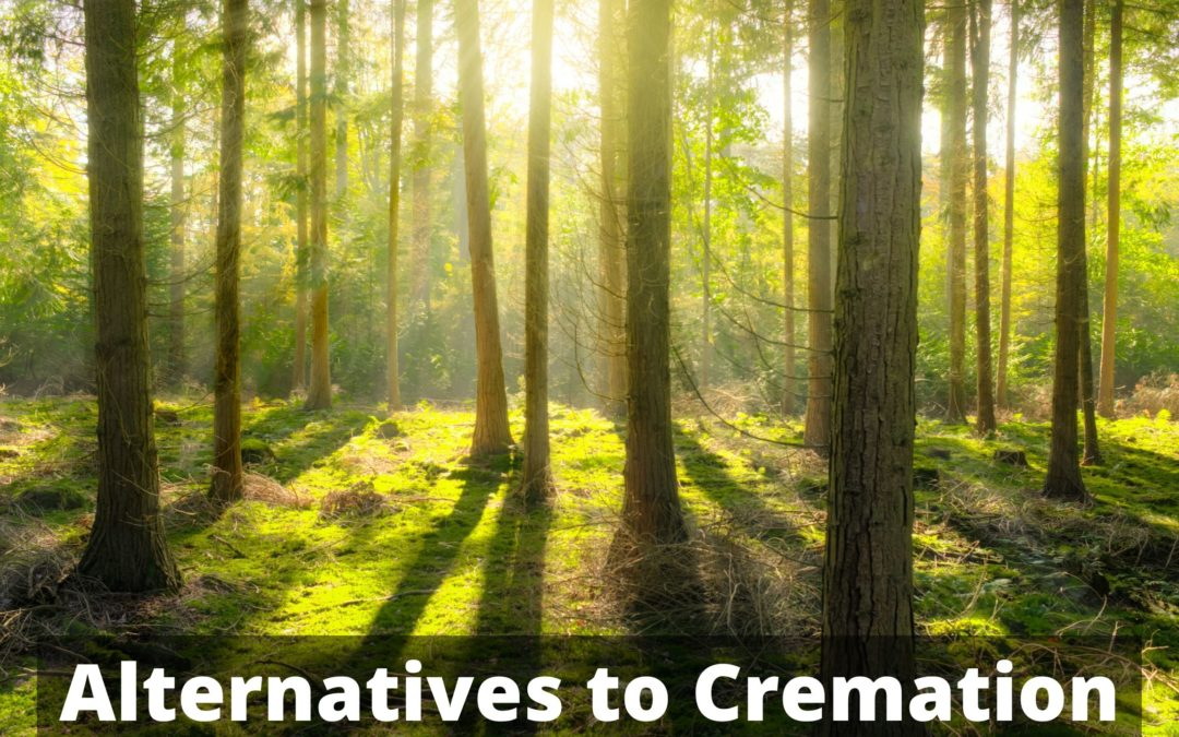 Alternatives to Cremation